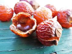 The Incredible Soap Nut: A Sustainable Laundry Solution