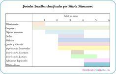 (scroll down for English) Un concepto muy importante a tener en cuenta, no sólo en Montessori sino en el desarrollo infantil en general, son los Periodos Sensibles, así que he pensado hacer un cuadro en el que se vean claros los 11 periodos sensibles y la duración aproximada de cada …