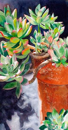 Watercolor succulents in clay pot, Watercolor Succulents, Watercolor Cactus, Watercolor Leaves, Watercolor And Ink, Watercolour Painting, Watercolors, Cactus Pictures, Illustration Blume, Cactus Art