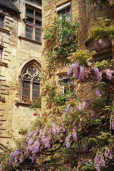 | ♕ | Sarlat - Belle Village in Dordogne | by © Dale Musselman