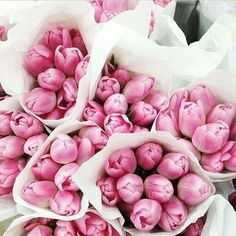 Flower market filled with arrangements of pink peonies in white paper