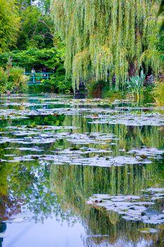 Photograph Monet's Garden by Steven Johnson on 500px