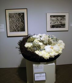 DSC05743 Pat Friday - Surface of the Moon by godutchbaby, via Flickr