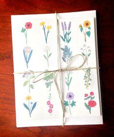 Botanical Illustration 4 Card Set by HannahRosengren on Etsy, $13.00