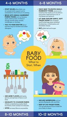 Starting solids is a big milestone for your baby—and you! Take a page from our healthy-from-the-start handbook and take the guesswork out of what foods to introduce, and when. Print it out our baby food graphic. and start feeding! Baby Food Guide, Baby Food Schedule, Food Baby, 8 Month Old Baby Food, Feeding Schedule For Baby, Food Guide For Babies, 3 Month Old Schedule, Baby Food Recipes Stage 1, Baby Food By Age