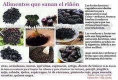 alimentos que sanan el riñon