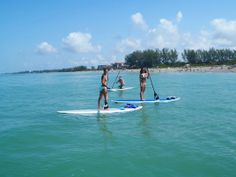 Due to our surroundings of water, paddle boarding, canoe rides and boating is a popular hobby in Sarasota
