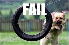 puppy fail!