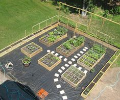 Garden Layout Ideas vegetable garden layout - for small spaces | what will grow
