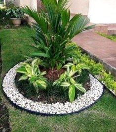 Landscaping With Rocks, Front Yard Landscaping, Landscaping Ideas, Pergola Ideas, Diy Garden, Garden Projects, Garden Ideas, Garden Edging, Garden Care