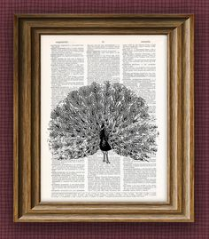Peacock bird beautifully upcycled vintage dictionary page book art print 8.5 x 11
