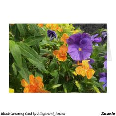 Greeting card, on Zazzle.  Store name: Allegorical_Littera.  Blank for your own message. Suitable for any occasion. A percentage from sales is donated to Multiple Sclerosis (MS) Research. Pansies. Painting. art. Illustration. Flowers.