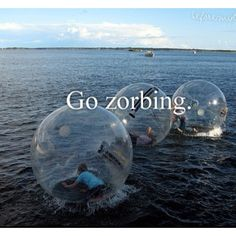 Zorbing in New Zealand. please