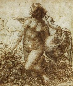 56 dessins de Leonard De Vinci dessin leonard de vinci leda2 27