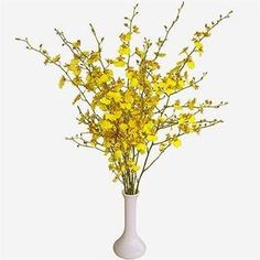 Buy wholesale cut Yellow Oncidium Orchids for UK delivery. The Oncidium Orchid is yellow & ideal for bridal work & wedding flowers. No minimum order required - Floral accessories also available. Flowers Uk, Flowers Online, Beautiful Flowers, Yellow Wedding Flowers, Yellow Flowers, Amazon Flowers, Yellow Orchid, Floral Arrangements, Oncidium Orchid