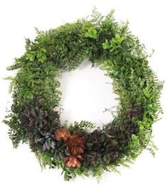 Wreath Project - This would go any place in your house. Change up the •Succulents- Assortment