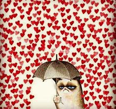 Valentine Grumpy Cat LOLz, just 'cause. Valentine's Day is coming! Are ya ready? Let us help woo your sweetie - lights never fail: http://www.flashingblinkylights.com/holiday/valentines-day.html?utm_source=pinterest&utm_medium=valentine's%20day&utm_campaign=cute%20valentines%20day%20ideas