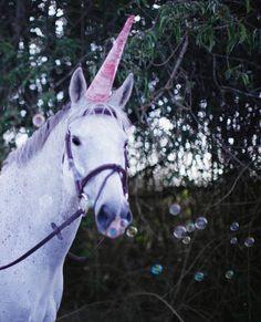 Hermès Unicorn
