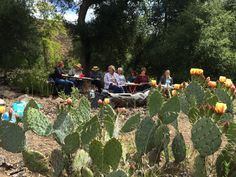 Working in the canyon on a beautiful spring day in the watercolor and mixed media workshop with Helen Shafer Garcia at Rancho La Bellota May 5-8, 2016.