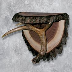 Our Small Whitetail Shelf is perfect for nature enthusiasts and sportsmen alike. Add it to your living room, fireplace setting, game room, or bedroom, preserving nature for generations to come. Deer Hunting Decor, Deer Decor, Rustic Decor, Antler Decorations, Hunting Wreath, Pheasant Hunting, Deer Antler Crafts, Antler Art, Deer Antlers