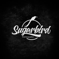 Lettering-and-Calligraphy-Logos-2016