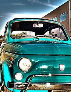 Fiat Cinquecento, Fiat 500l, Fiat Abarth, Fiat Cars, Cute Cars, Car In The World, Small Cars, Steyr, Vespa