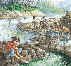 Gold Rushes in Western North America between 1849 & the end of the century. Native people escorted miners to the goidfields & they also helped to build the Cariboo Road which also helped spread diseases to different communities. Europeans always get the first jobs, but when there was a labor shortage contractors began hiring Chinese & Aboriginal people. 1/3 workers were Chinese but the Gold Rush brought death to many Native people and many didn't survive.