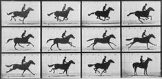 Eadweard Muybridge. 9 April.