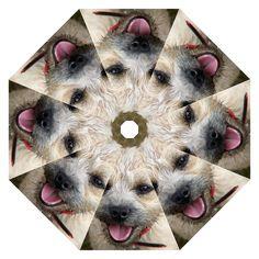 Border Terrier Hook Handle Umbrellas (Medium)