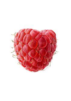 Botanica At Farm Cove: Raspberry by Lauren Sahu-Khan Watercolor Fruit, Fruit Painting, Watercolor Flowers, Watercolour, Botanical Flowers, Botanical Prints, Fruit Animals, Gcse Art Sketchbook, Surface Art
