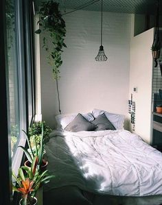 pinterest: morgangre
