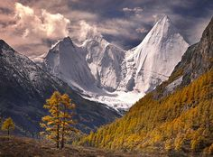 """""""Fall in the Himalaya by Michael Anderson"""""""