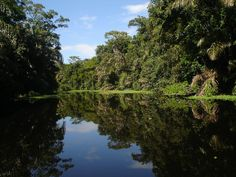 Tortuguero, Costa Rica - Enchanting Costa Rica