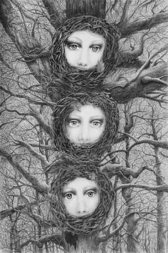 Black and white - nest - face -  Cynthia Lund Torroll