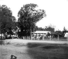 Lienzo charro 1955