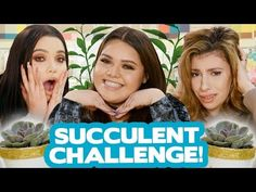 Karina Garcia, Who Will Win, Succulents Diy, Diy Videos, Decoration, Craft Stores, Diys, Crafts For Kids, Challenges