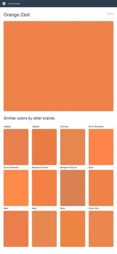 Orange Zest, Behr. Click the image to see similiar colors by other brands.