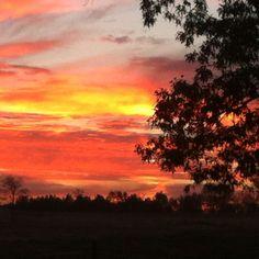 Morning sun rise in East Texas