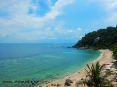 Koh Tao beaches offer superb conditions to swim with turtles and sharks in Thailand - Learn here the 12 best snorkeling spots and get useful travel tips. Best Snorkeling, Koh Tao, Shark, Thailand, Around The Worlds, Swimming, Explore, Beach, Water