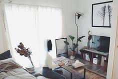 「26m2。理想の土地で楽しむセルフリノベーション。塩系1Kルーム」 by MmeetsNさん   RoomClip mag   暮らしとインテリアのwebマガジン Curtains, Bedrooms, Decoration, Home Decor, Decor, Blinds, Decoration Home, Room Decor, Bedroom