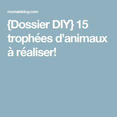 {Dossier DIY} 15 trophées d'animaux à réaliser!