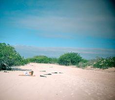 Sur notre blog, nous parlons #galapagos #ecuculture #paradis Culture, Beach, Water, Blog, Outdoor, Gripe Water, Outdoors, The Beach, Beaches