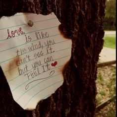 wouldn't it be cute for an outside wedding to have lots of different notes from the bride and groom post to a tree like this? poems they love/music lyrics/...anything about them...and guests could add to it! and then you could frame all the papers in one from the wedding day!!!!!!!!!.....got this idea all from this pic...yay Pinterest!!!