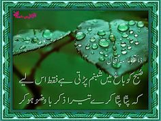 Allama-iqbal-urdu-shayari-subha-ko-baag-mein-shabnam-parrti-ha-faqat-is-liye-ky-patta-patta-kary-tera-zikar-bawuzo-ho-kar.jpg (1200×900)