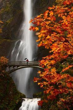 Misty, Multnomah Falls, Oregon  photo via fina