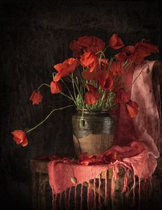 Love red, love poppies, love shawls, love pots, ok that is enough. Oh, love black backgrounds and this composition too. S.