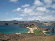 Would love to visit the Galapagos Islands someday!