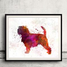 Affenpinscher 01 in watercolor INSTANT DOWNLOAD by PaulPrintables