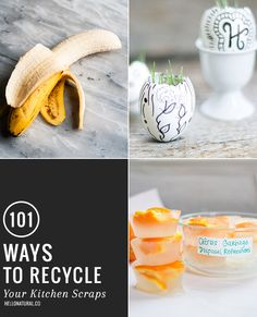 101 Uses for Used Coffee Grounds, Egg Shells + Fruit Peels | HelloNatural.co