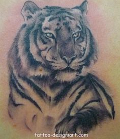tiger animal tattoo idea image photo picture tattoos art design styles19 http://www.tattoo-designiart.com/animals-tattoos/tiger-tattoo-design-picture-2/